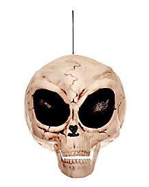 6 Inch Alien Skull – Decorations