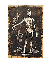 Skeleton Canvas - Decorations