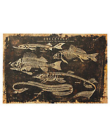 Skeleton Fish Canvas - Decorations