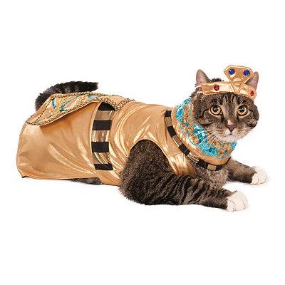 Pets Cleopatra Costume