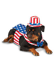 Big Dog Uncle Sam Costume