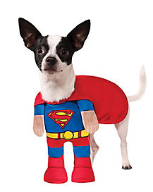 Dog Superman Costume - DC Comics