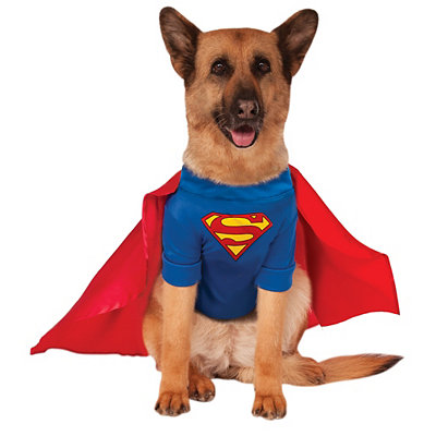Big Dog Superman Costume - DC Comics