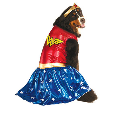 Big Dog Wonder Woman Costume - DC Comics