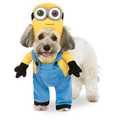 Bob Minion Dog Costume - Despicable Me