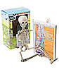 Skeleton in the Closet Book