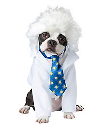 Einstein Dog Pet Costume