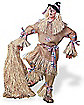 Adult Scarecrow Character Costume - Deluxe