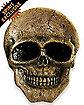 Ceramic Skeleton Face Serving Platter