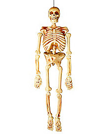 5 ft realistic skeleton decorations - Skeleton Decorations
