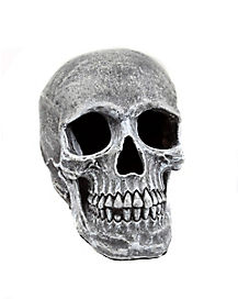 Large Realistic Skull Prop - Decorations