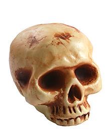 8 Inch Bottomless Skull Head - Decorations