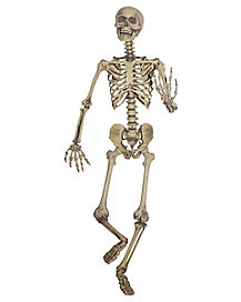 High Quality 5 Ft Hanging Skeleton Decoration   Decorations