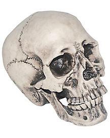 Vinyl Skull Decorations