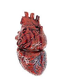 Human Heart - Decorations
