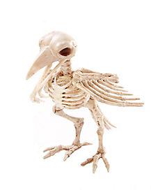 Skeleton Crow - Decorations