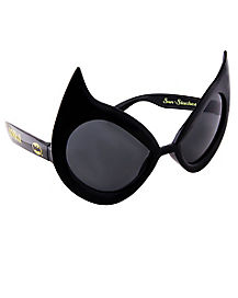 Catwoman Glasses - DC Comics