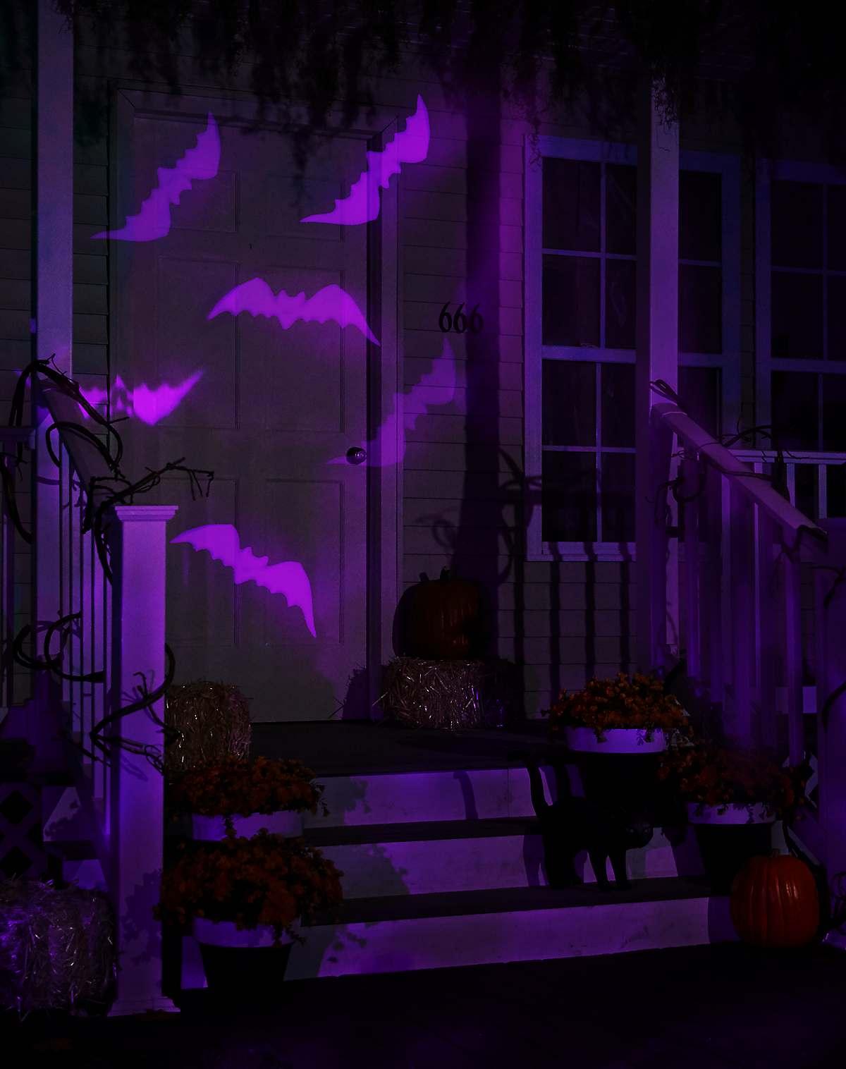Bat Whirl-A-Motion Lights