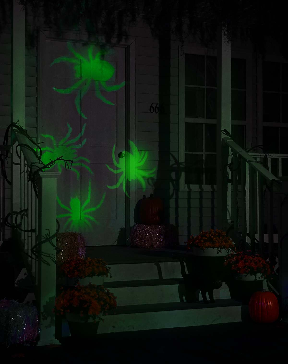Spider Whirl-A-Motion Lights