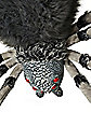 8 Ft Wolf Spider - Decorations