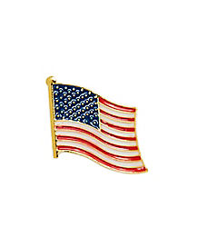 Presidential Flag Pin