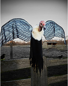 3 Ft Flying Vulture Animatronics – Decorations