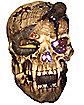 Fiber Optic Snake & Skull Table Decoration