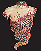 Chest With Intestines Prop