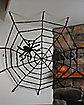 Elastic Spider Web