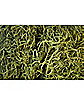 Spanish Moss Green 10 Lb Box