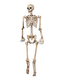 5 ft Pose 'N' Stay Skeleton - Decorations