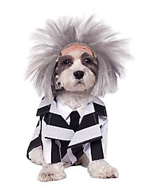 Beetlejuice Pet Costume - Beetlejuice
