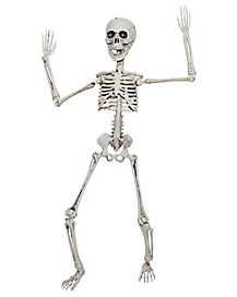 20 in Posable Skeleton - Decorations