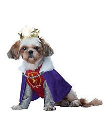 King of Bones Dog Costume