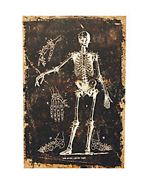Skeleton Canvas - Decorations