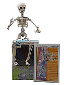 Skeleton in the Closet Book