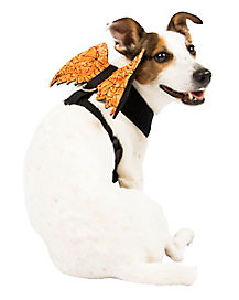 Orange Web Wings Pet Harness