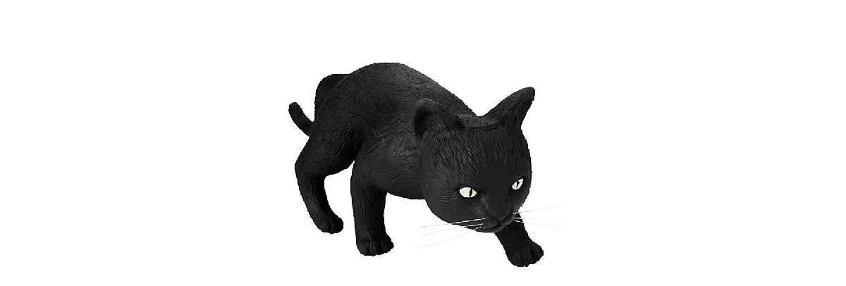 Black cat decoration
