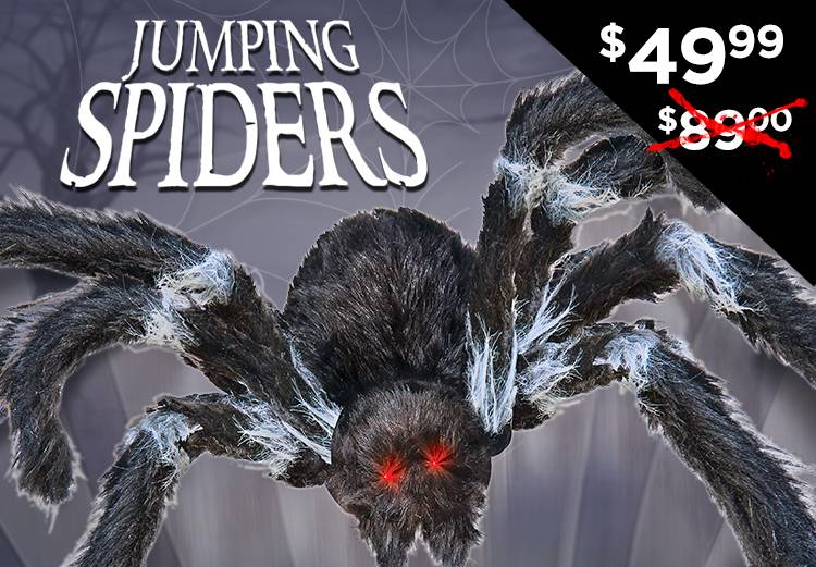 Shop Jumping Spider